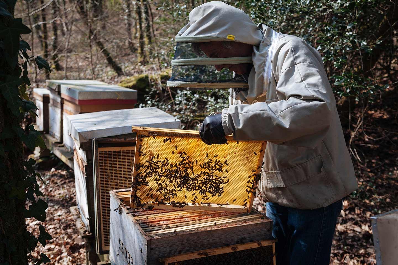 femme apiculture cherche homme